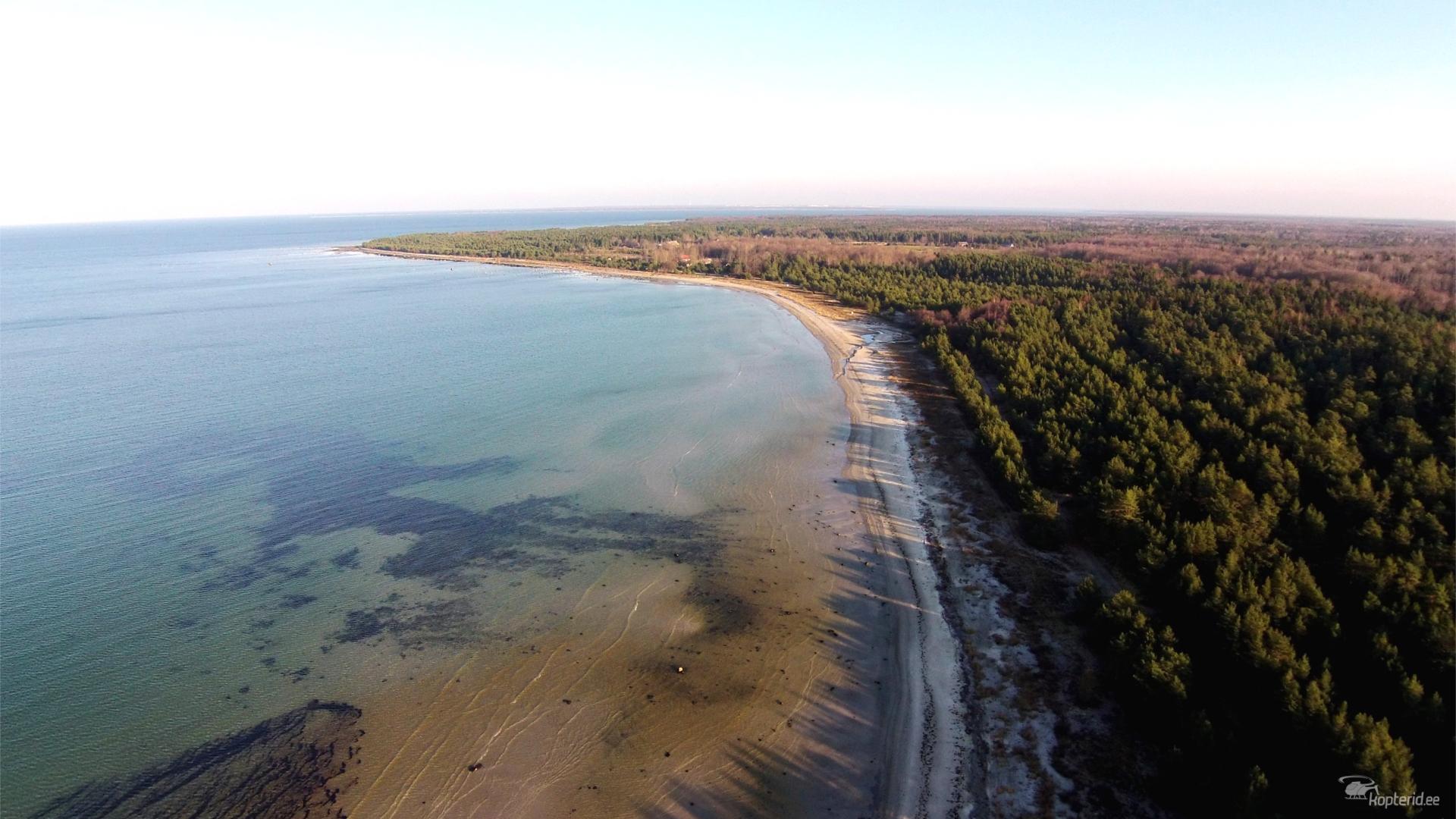 Põhja-Eesti rannik
